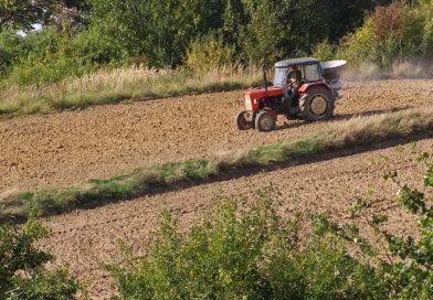 7 najpopularniejszych modeli ciągników rolniczych w Polsce