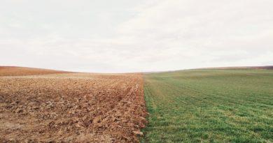 Pieniądze na uprawę ziemi – jak zdobyć dodatkowe środki?